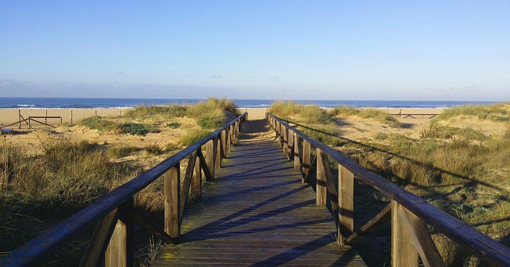 Beach at Conil de la Frontera