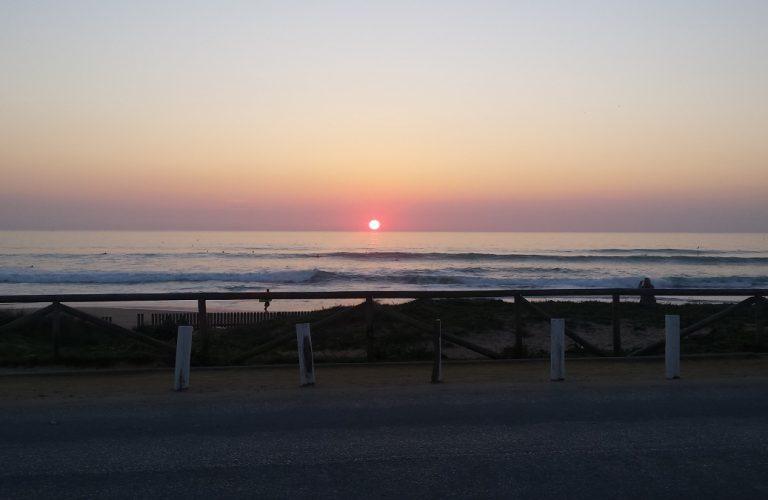 El Palmar at Sunset